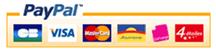 Logo-paiment